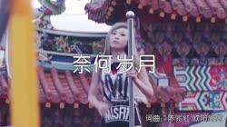 奈何岁月 DJ可乐版 美女热舞汽车音响视频