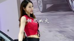 相思如火 DJ何鹏Remix 美女车模汽车音乐视频
