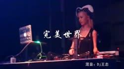 完美世界 DJ王志 夜店美女车载dj视频酒吧现场