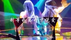 别等我离开才说爱我 DJ王志 DJ美女打碟现场视频