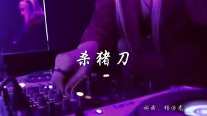 杀猪刀 DJ何鹏 夜店美女车载dj视频酒吧现场